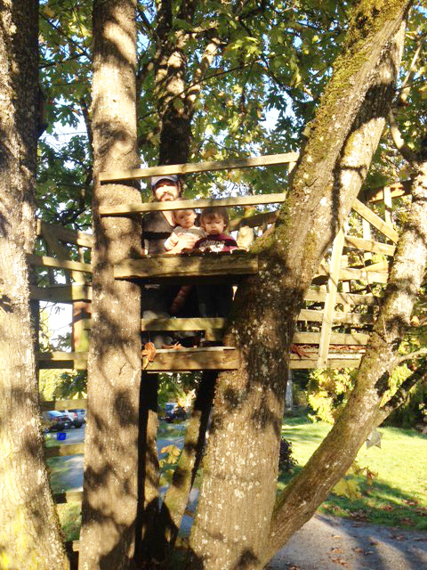 Everyone loves a treehouse.